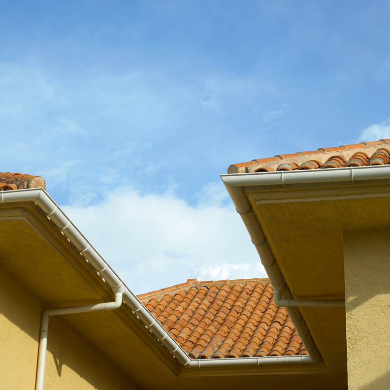 Gutter Cleaning Florida